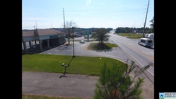 18572 Hwy 231 19.002, Pell City, AL - USA (photo 2)