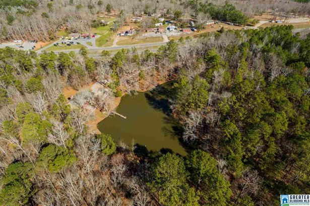 12199 Hwy 280, Sterrett, AL - USA (photo 3)