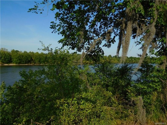 2431 Alabama River Parkway, Millbrook, AL - USA (photo 2)