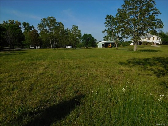 2431 Alabama River Parkway, Millbrook, AL - USA (photo 5)