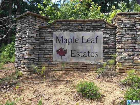 100 Maple Leaf Trl Lots 1,2,3, Wilsonville, AL - USA (photo 1)