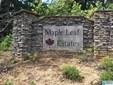 100 Maple Leaf Trl Lots 1,2,3, Wilsonville, AL - USA (photo 1)