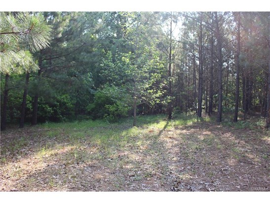 Lot 21 Chesson Hill Drive, Fitzpatrick, AL - USA (photo 4)