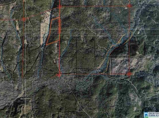 66 Acres Barton Rd 66 Acres, Marion, AL - USA (photo 2)