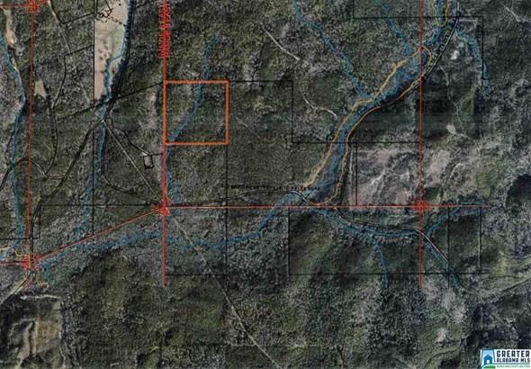 66 Acres Barton Rd 66 Acres, Marion, AL - USA (photo 3)