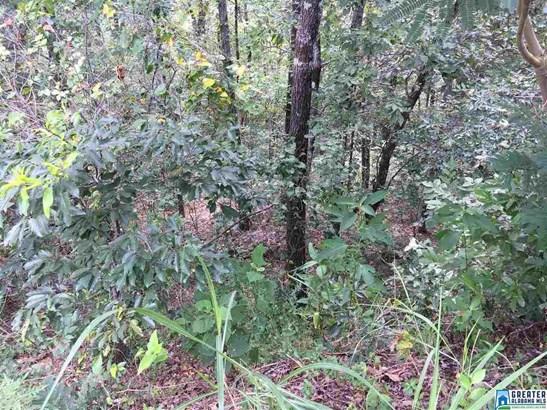 Lot 3 Overlook Rd Lot 3, Blountsville, AL - USA (photo 1)