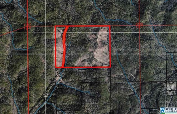 119 Acres Barton Rd 119 Acres, Marion, AL - USA (photo 1)