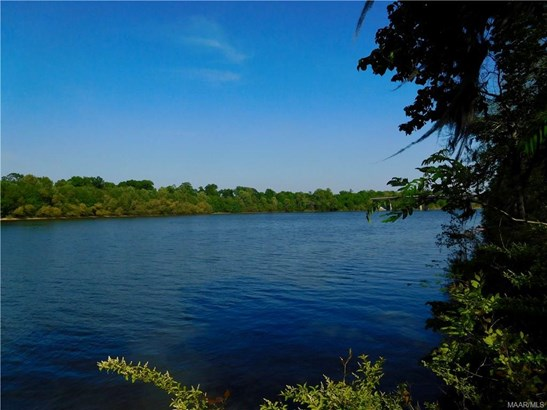 19 & 20 River Forest Court, Millbrook, AL - USA (photo 3)