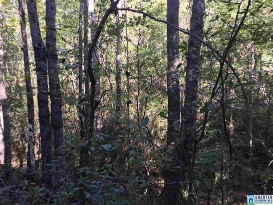 5735 Miles Spring Rd 94 Acres, Birmingham, AL - USA (photo 2)
