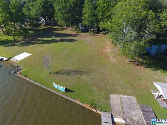 445 Blue River Dr N, Lincoln, AL - USA (photo 5)