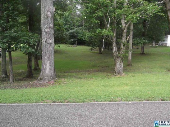 1361 Mccravy Ln Parcel Ii, Mount Olive, AL - USA (photo 1)