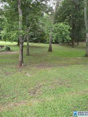 1361 Mccravy Ln Parcel Ii, Mount Olive, AL - USA (photo 3)