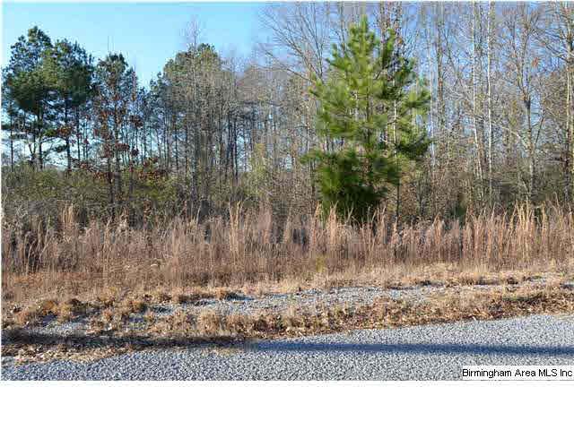 0 Trappers Way 14, Springville, AL - USA (photo 1)