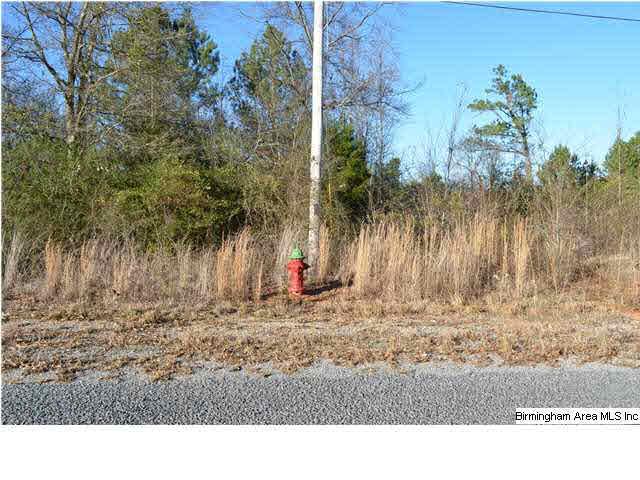 0 Trappers Way 14, Springville, AL - USA (photo 2)