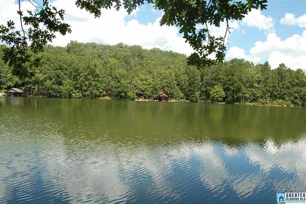 125 Deerwood Lake Dr 13, Harpersville, AL - USA (photo 1)