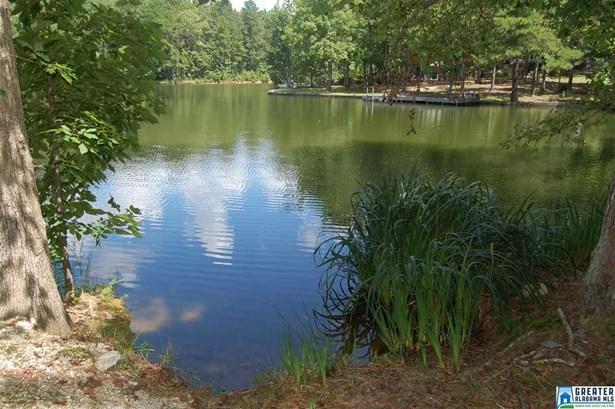 125 Deerwood Lake Dr 13, Harpersville, AL - USA (photo 4)