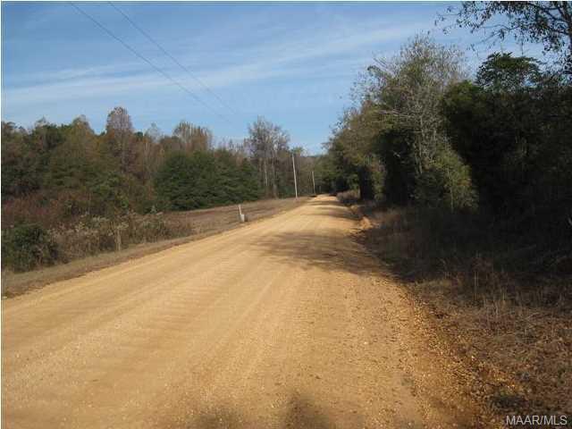 0 County Rd 25 Road, Autaugaville, AL - USA (photo 3)