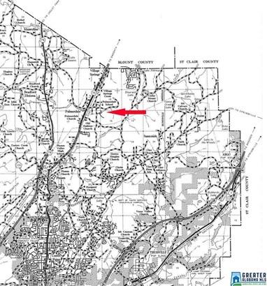 5735 Miles Spring Rd 94 Acres, Birmingham, AL - USA (photo 4)