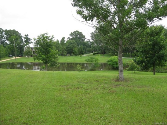 2369 Alabama River Parkway Parkway, Millbrook, AL - USA (photo 4)