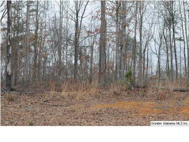 1620 12 Th Terr 5, Pleasant Grove, AL - USA (photo 2)