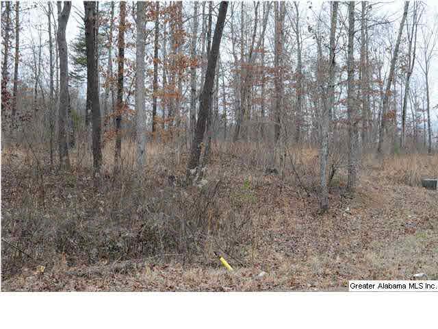 1620 12 Th Terr 5, Pleasant Grove, AL - USA (photo 3)