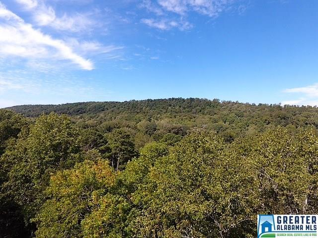 6478 Red Hollow Rd 1, Pinson, AL - USA (photo 4)