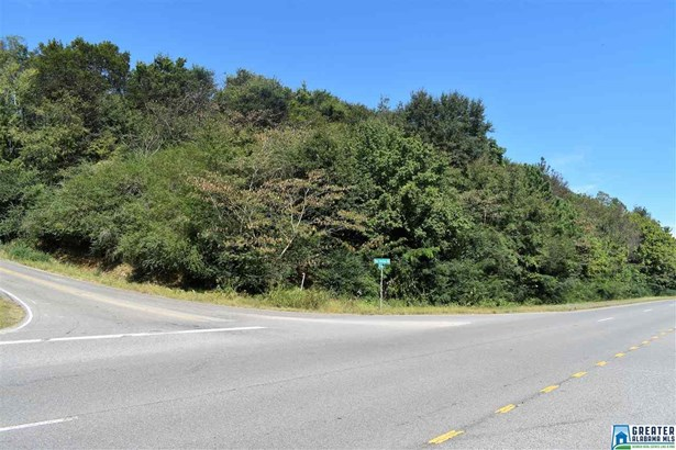 6478 Red Hollow Rd 1, Pinson, AL - USA (photo 2)