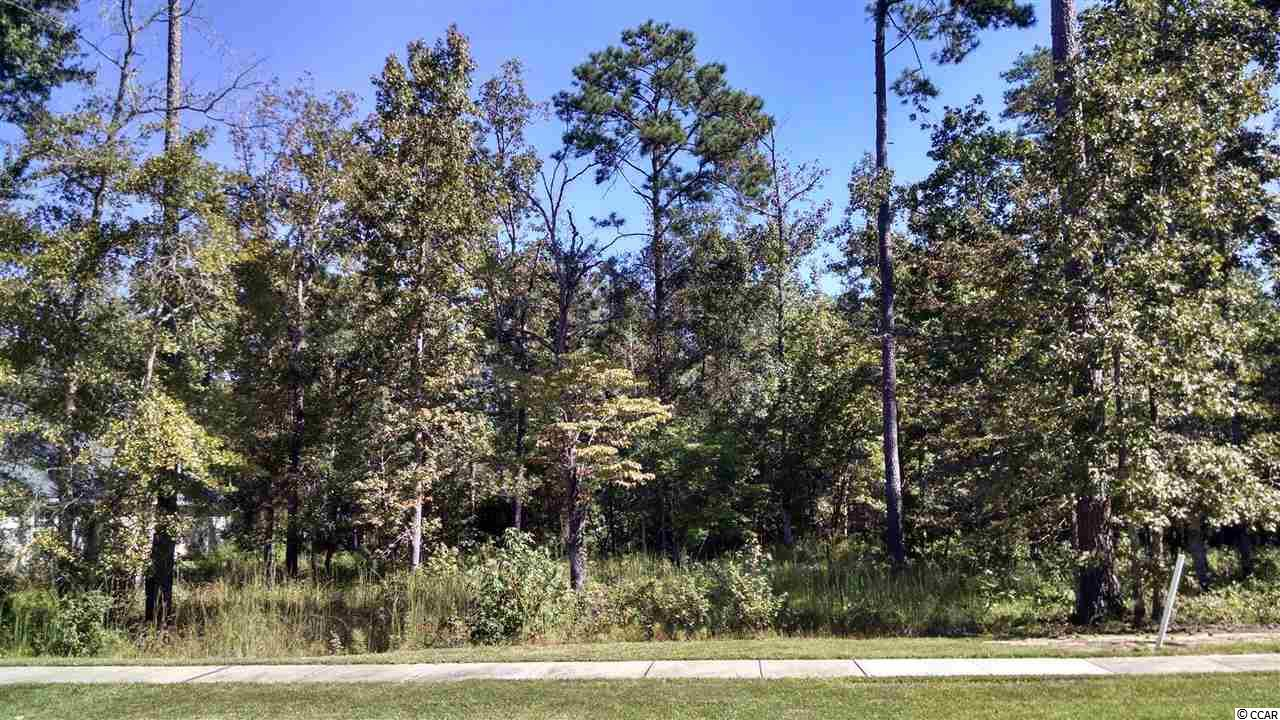 Residential Lot - Myrtle Beach, SC (photo 2)