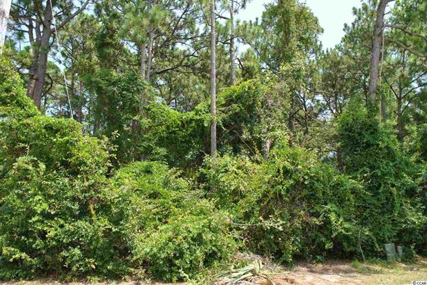 Residential Lot - North Myrtle Beach, SC (photo 1)