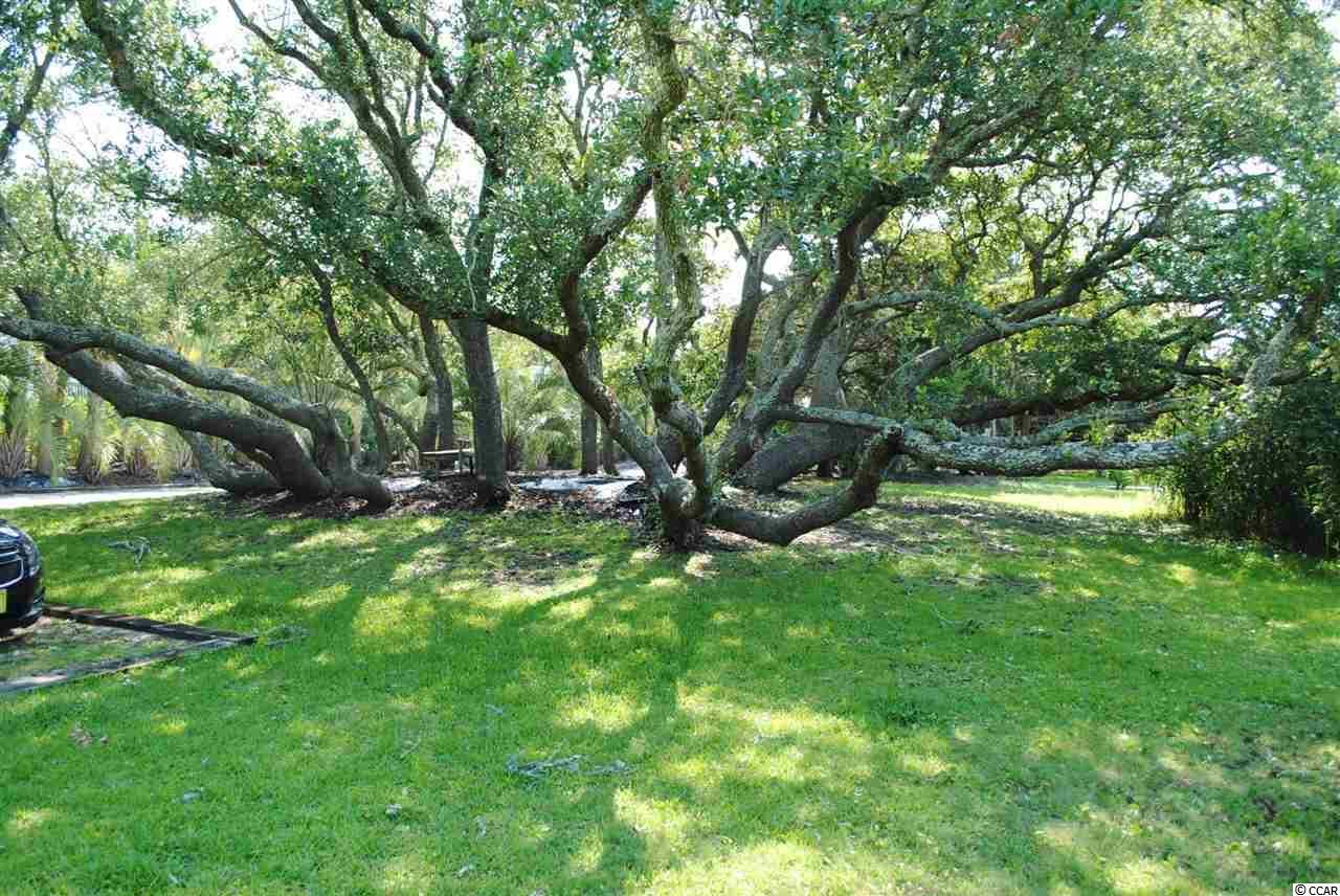 Residential Lot - Pawleys Island, SC (photo 1)