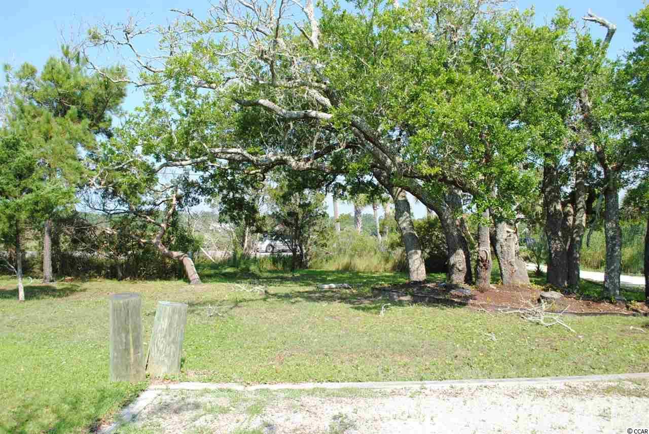 Residential Lot - Pawleys Island, SC (photo 2)