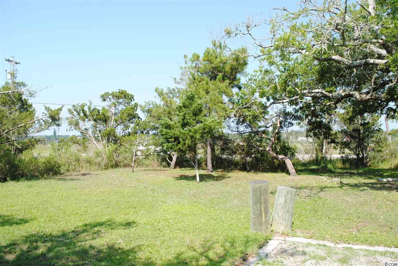 Residential Lot - Pawleys Island, SC (photo 3)