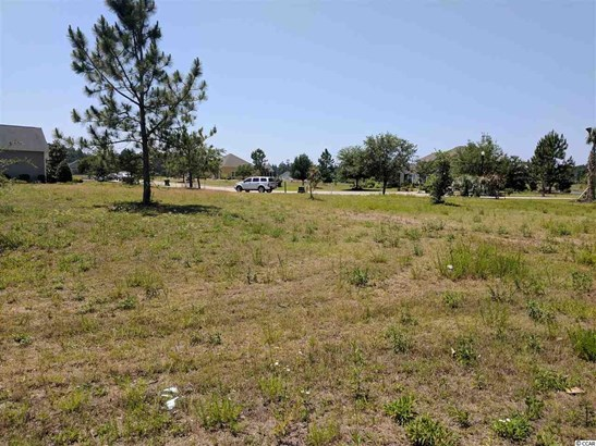 Residential Lot - Conway, SC (photo 4)