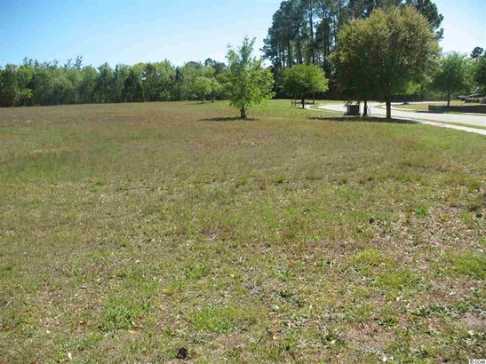 Residential Lot - Conway, SC (photo 3)