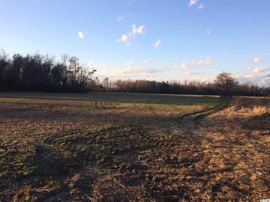 Farm - Loris, SC (photo 5)