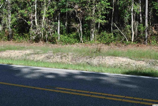 Residential Lot - Little River, SC (photo 2)