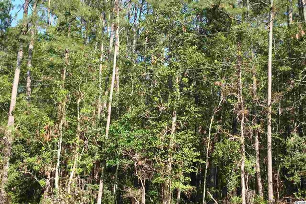 Residential Lot - Little River, SC (photo 3)
