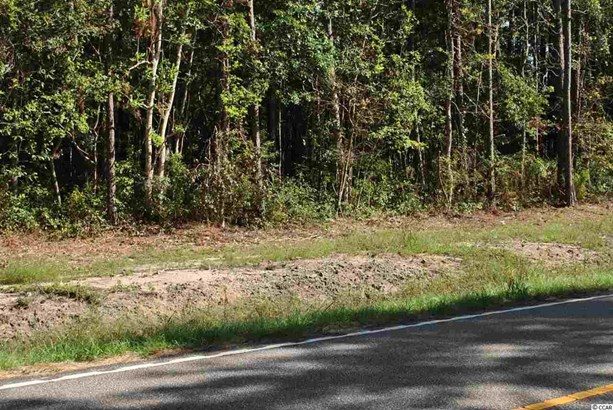 Residential Lot - Little River, SC (photo 4)