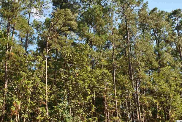 Residential Lot - Little River, SC (photo 5)