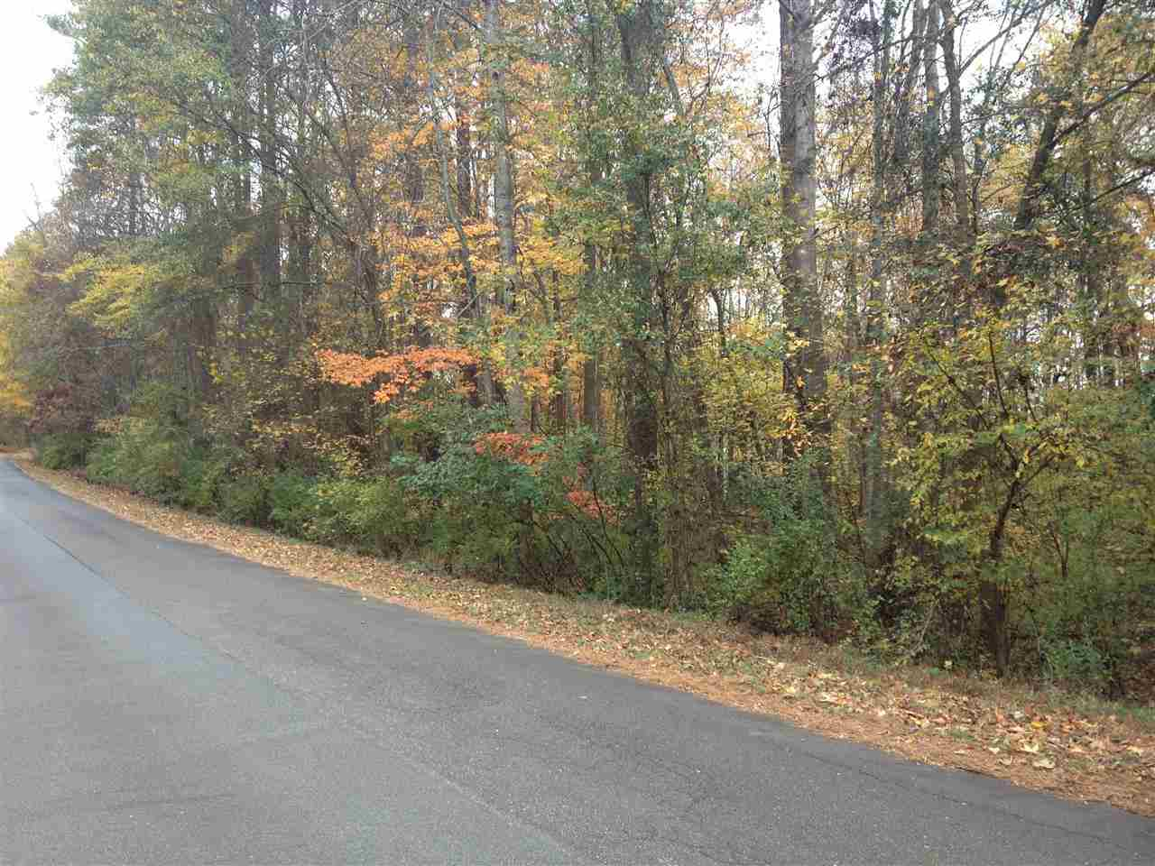 Residential Lot - Rock Hill, SC (photo 2)