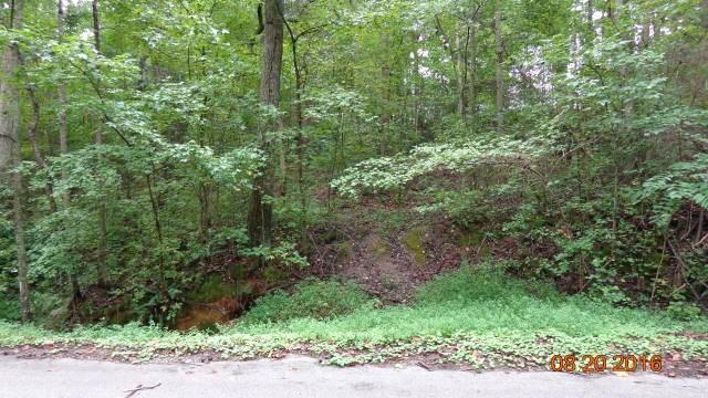 Under 10 Acres - Clover, SC (photo 3)