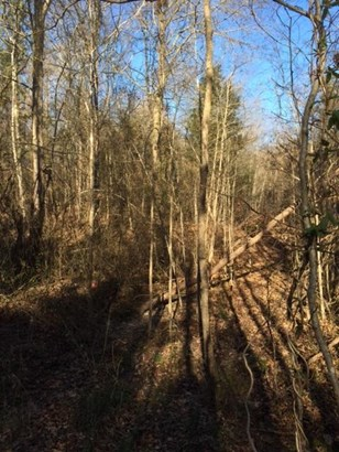 Over 10 Acres - Rock Hill, SC (photo 1)