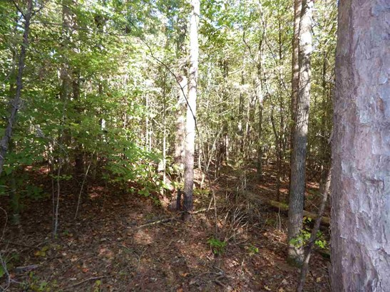 Residential Lot - Hickory Grove, SC (photo 4)