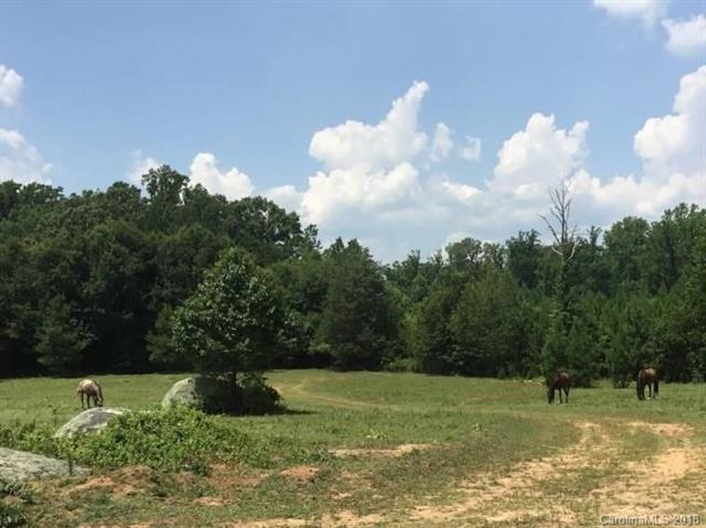 Farm - Rock Hill, SC (photo 1)