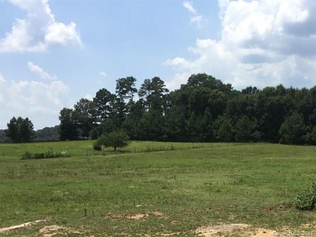 Farm - Rock Hill, SC (photo 3)