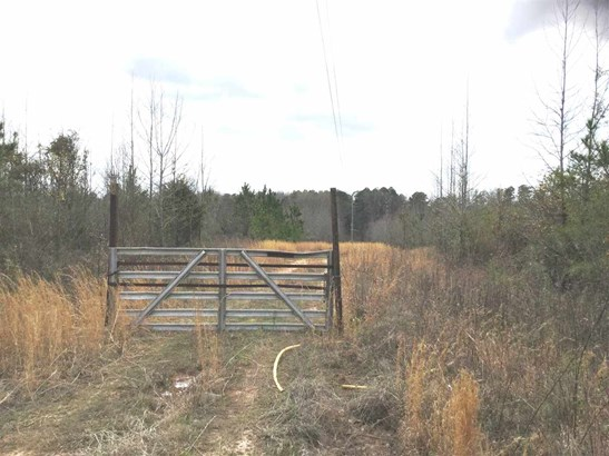 Residential Lot - Catawba, SC (photo 4)