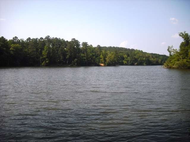 Residential Lot - Great Falls, SC (photo 3)