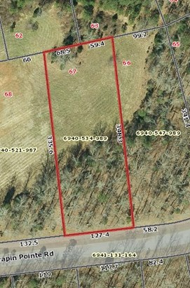 Residential/Subdivision Lot - Ware Shoals, SC (photo 2)