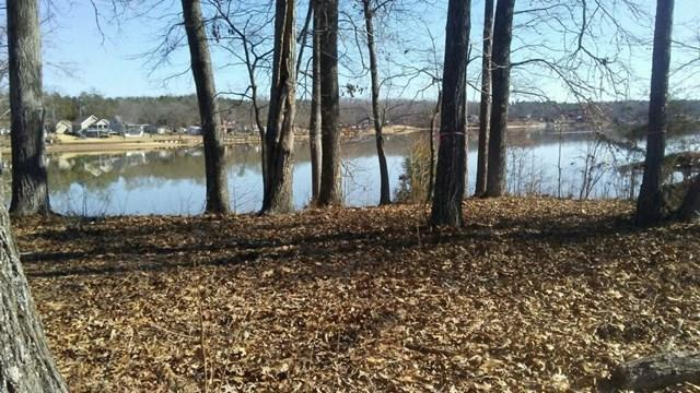 Residential/Subdivision Lot - Hodges, SC (photo 2)
