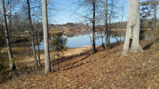 Residential/Subdivision Lot - Hodges, SC (photo 3)